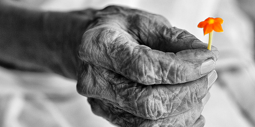 Old hand by Prasanth Chandran